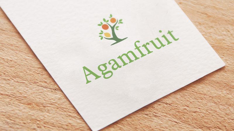 agamfruit-mockup